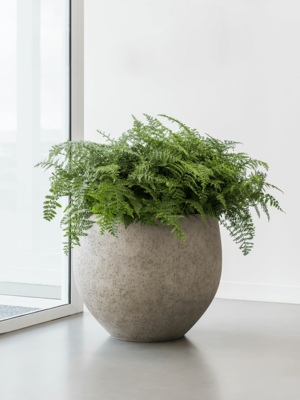 Jardinières en composite- Jumbo orb