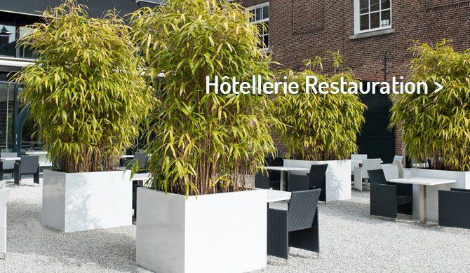 Jardinières pour Hôtellerie Restauration
